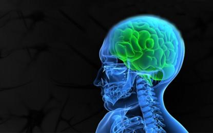 Conheça mais sobre a neurocirurgia