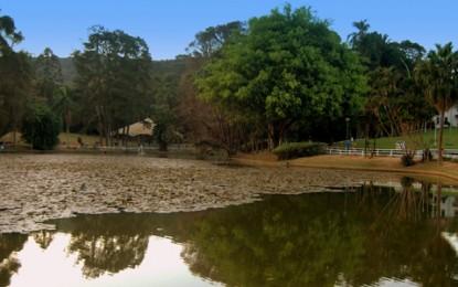Horto Florestal oferece atividades educativas