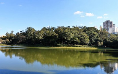 Parque da Aclimação oferece diversas opções de entretenimento
