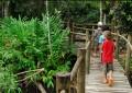 Itamambuca Eco Resort, um hotel de praia no meio da floresta