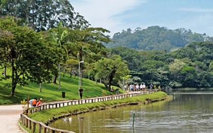 Parque do Carmo abriga a tradicional Festa da Cerejeira