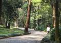Parque do Guarapiranga protege a produção hídrica na Zona Sul