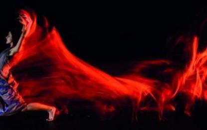 Exposição fotográfica Amor, Vida e Morte da São Paulo Companhia de Dança
