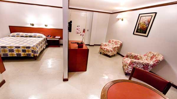 acomodação com sala de estar no hotel nobilis
