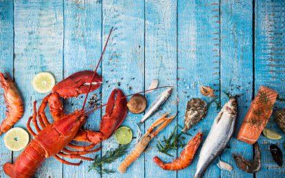 Edição Verão de 2018 do Festival do Pescado vai até março no Ceasgesp
