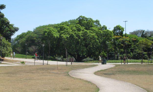 Parque do povo: local para a terceira idade aproveitar o melhor da vida