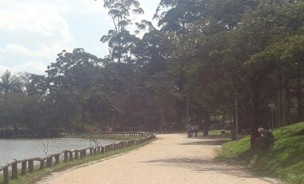 Conheça toda a história e visite o Parque do Carmo